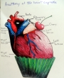 Anatomy of the Heart Cupcake